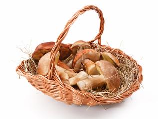 Natural mushrooms in basket
