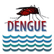 Dengue Fever mosquito, standing water, infectious virus disease
