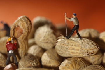 Plastic People Working on Peanuts