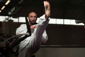 Taekwondo Fighter Pose