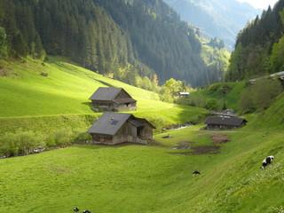 Alm- und Berghütten