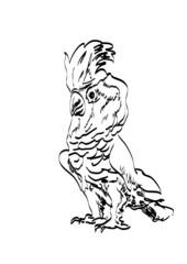 cockatoo рarrot