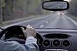 Driving a car - 65093460
