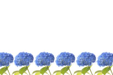 紫陽花のフレーム