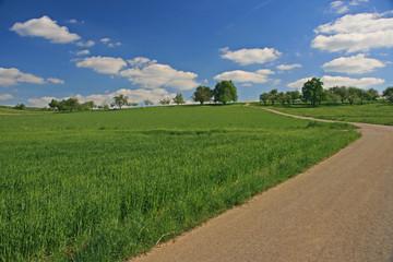 Landschaft mit Fahrweg