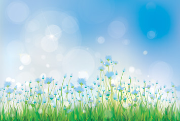 Vector nature background with  blue flowers.
