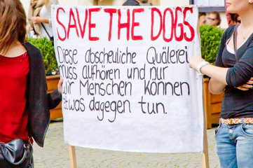 Save the dogs - Demonstration