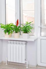 Heating white radiator radiator with flower and window.