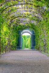Garden of Schonbrunn Palace in Vienna, Austria