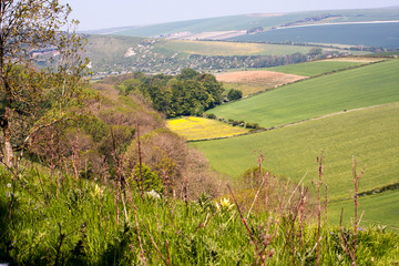 View from Downs in Friston Forest East Sussex