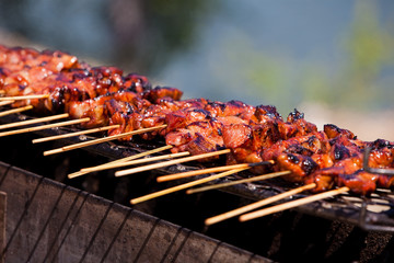 Satay on barbeque