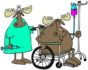 Moose patient & nurse