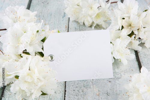 Tuinposter Azalea flowers with card