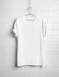 blank t-shirt - 65105202