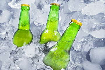 Three bottles of beer on ice
