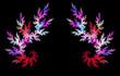 Multicolor fractal flower on black background.
