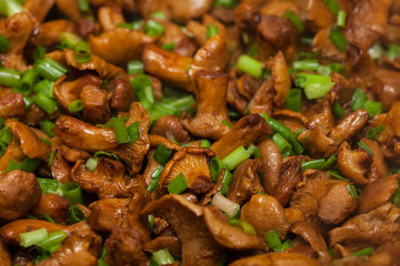 Fried chanterelle