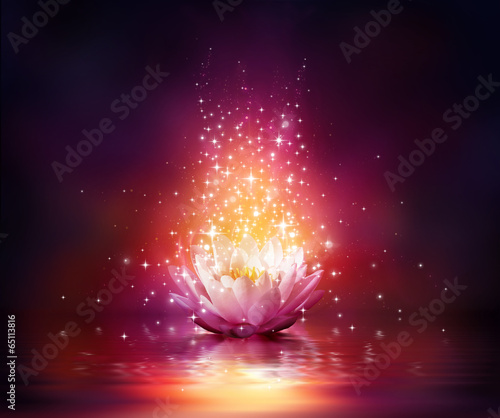 magic flower on water poster