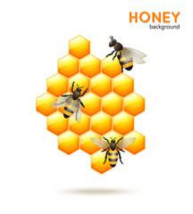 Honey bee background