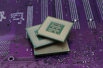 processors on the motherboard