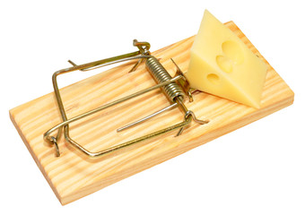 Mouse Trap And Cheese