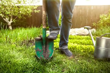 man holding foot on shovel at garden at sunny day