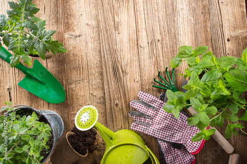 Papiers peints Printemps Outdoor gardening tools and herbs