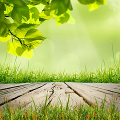 wooden table with natural green background