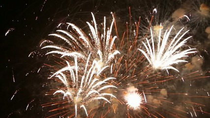 Holiday. Night fireworks