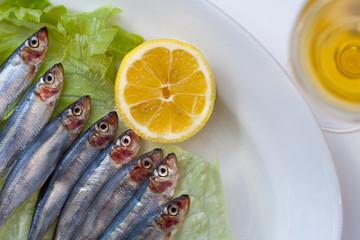 fresh sardine fish on plate