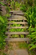 Wooden stairway.