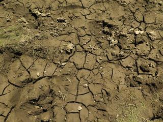 Suelo, tierra erosionada. Desierto.
