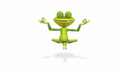 frog meditates