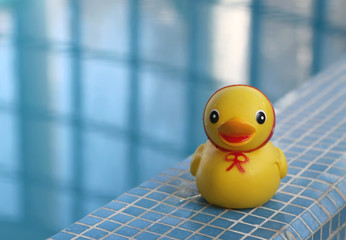 Желтая резиновая уточка у бассейна