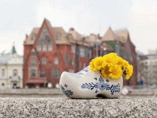 Голландский башмачок с живыми цветами
