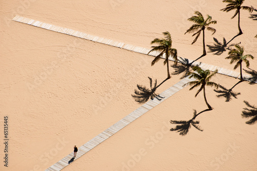 canvas print picture beach -palm lined