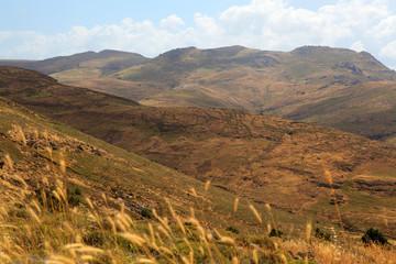 Berglandschaft