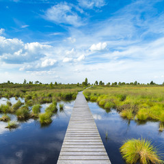 Boardwalk at the Hautes Fagnes at a bog lake