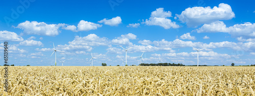 canvas print picture Windpark im Getreidefeld