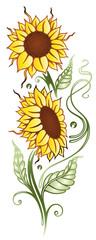 Bunte Sommerblumen, Sonnenblumen