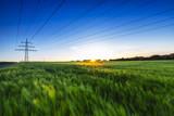Kornfeld im Sonnenuntergang mit Strommast