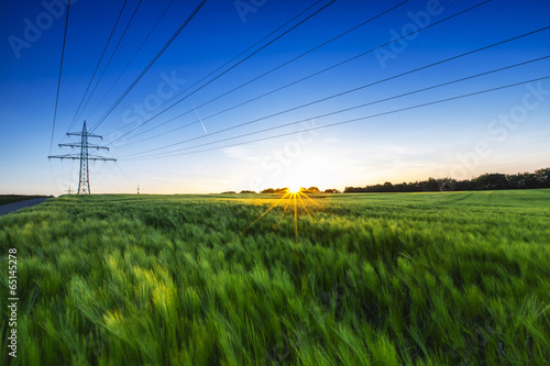 canvas print picture Kornfeld im Sonnenuntergang mit Strommast