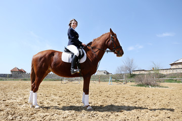 Beautiful girl riding a horse outdoors