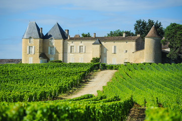 Vineyard and Chateau d'Yquem, Sauternes Region, Aquitaine, Franc