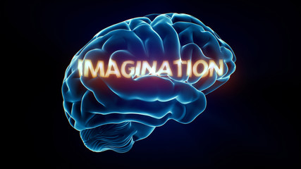 Imagination Xray Brain