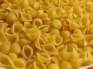 conchiglie di pasta 2