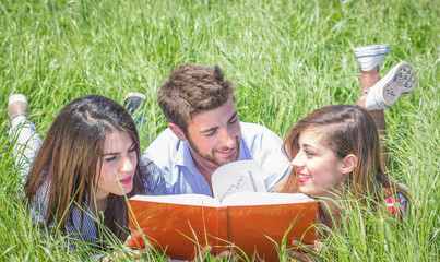 students study together in the grass