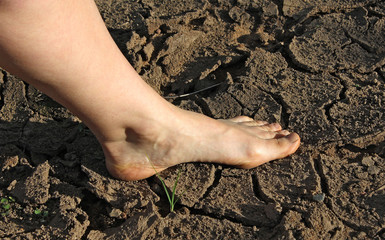 bare foot on the cracked dry earth
