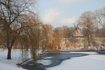frozen lake and windmill