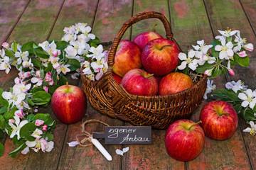 Apfelkorb mit Schild auf Holz, eigener Anbau